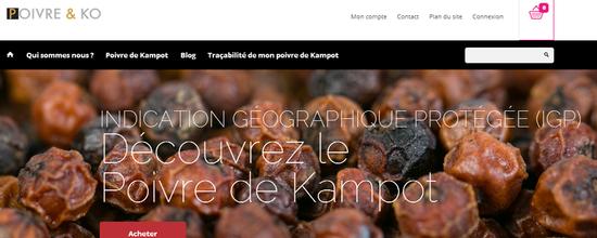 Site internet et boutique en ligne