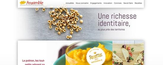 Evolution du site Ansamble