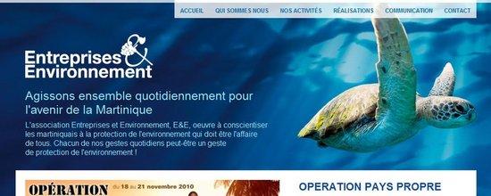 Site web Entreprises & Environnement