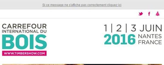 Réalisation emailing Carrefour du bois