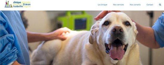 Un site web pour Vétérinaires Simon Daguin